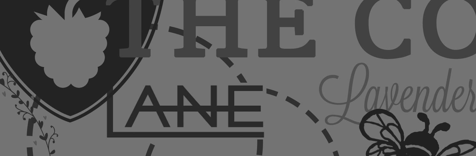 Logo Design & Identity